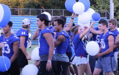 Junior Megan Bobo passes out blue and white balloons for seniors to release together at the homecoming pep rally on Wednesday.