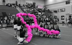 Pep Rally Raises Breast Cancer Awareness
