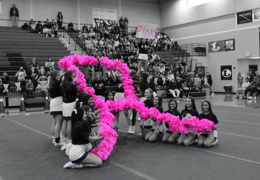 The cheerleaders hold up a pink ribbon in honor of Breast Cancer Awareness Month at the pep-rally on Oct. 18.